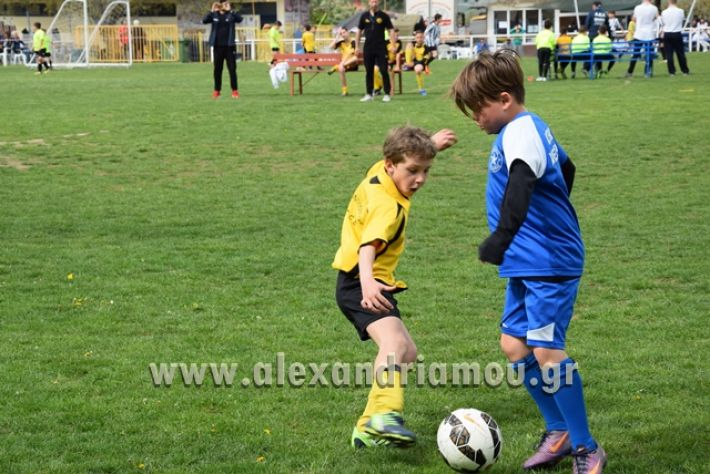 alexandriamou.gr_asterasraxia083