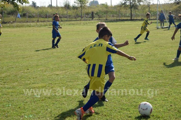 alexandriamou.gr_asteras056DSC_0850