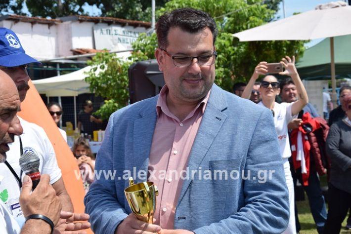 alexandriamou_asterastournoua2019DSC_0306