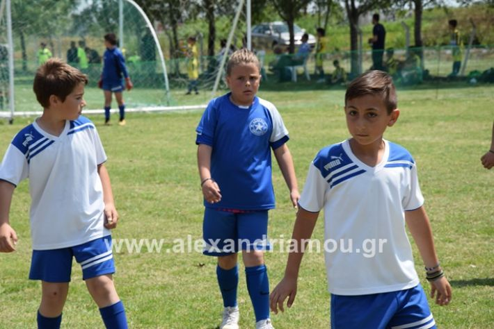 alexandriamou_asterastournoua2019DSC_0372