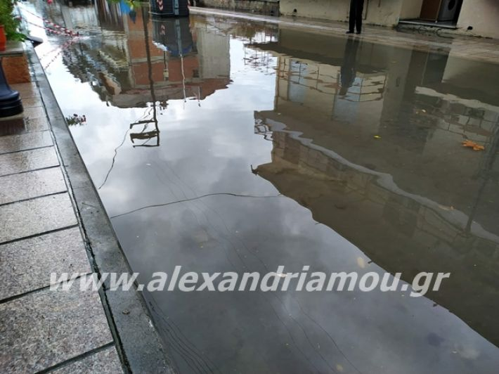 alexandriamou.gr_broxi2019000