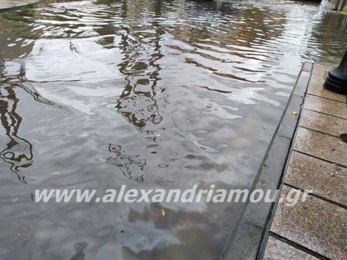 alexandriamou.gr_broxi2019022
