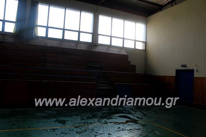alexandriamou.gr_daknero2019IMG_1053