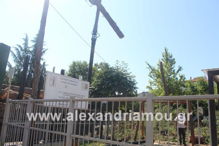 alexandriamou.gr_dentradimarxos2019023