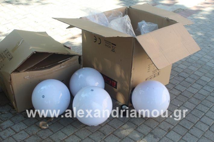 alexandriamou.gr_dentradimarxos2019043