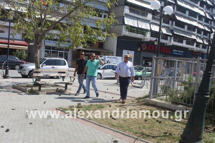 alexandriamou.gr_dentradimarxos2019057