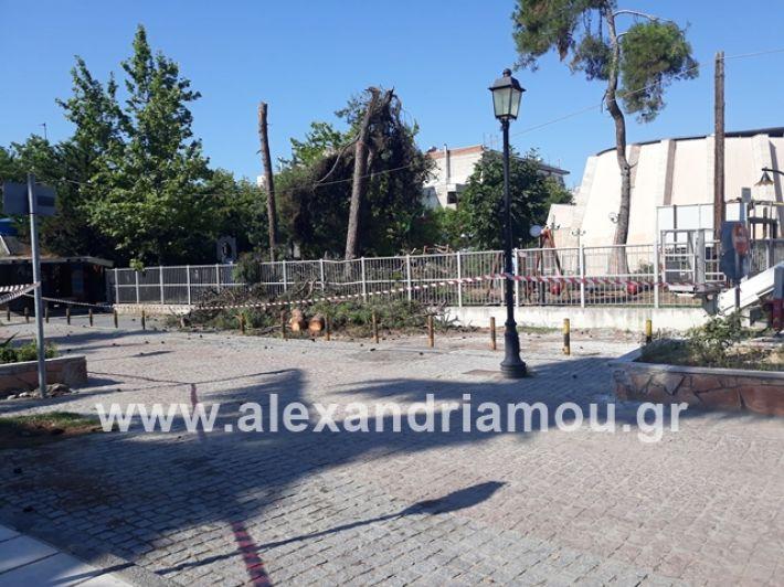 alexandriamou.gr_dentradimarxos2019096
