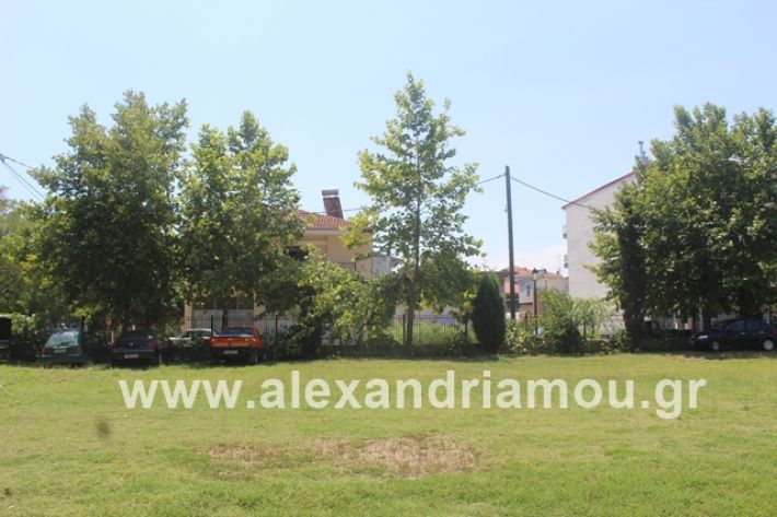 alexandriamou.gr_dentrapanagia2019020