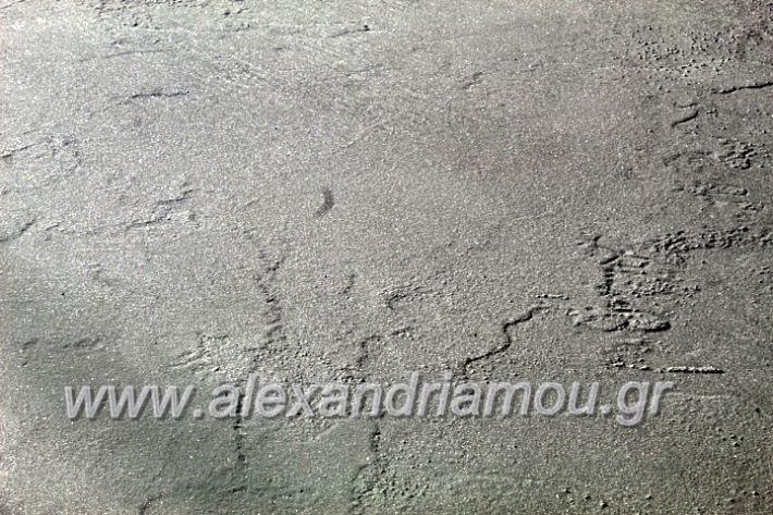 alexandriamou.gr_dentro29.11.19IMG_1749