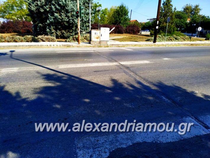 alexandriamou.gr_diavaseis201969639382_1062616144130152_9137748097122697216_n