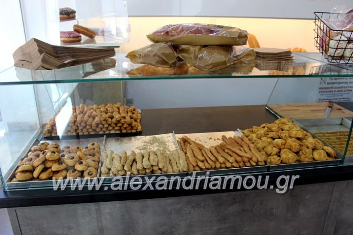 alexandriamou.gr_dimeldiakrisiIMG_2103