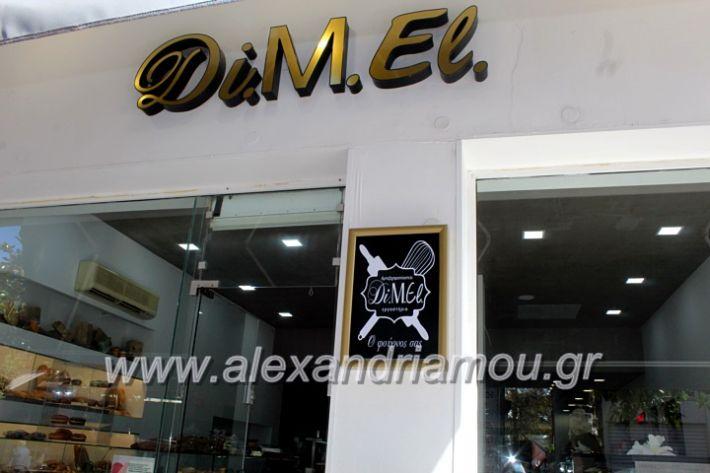 alexandriamou.gr_dimeldiakrisiIMG_2142