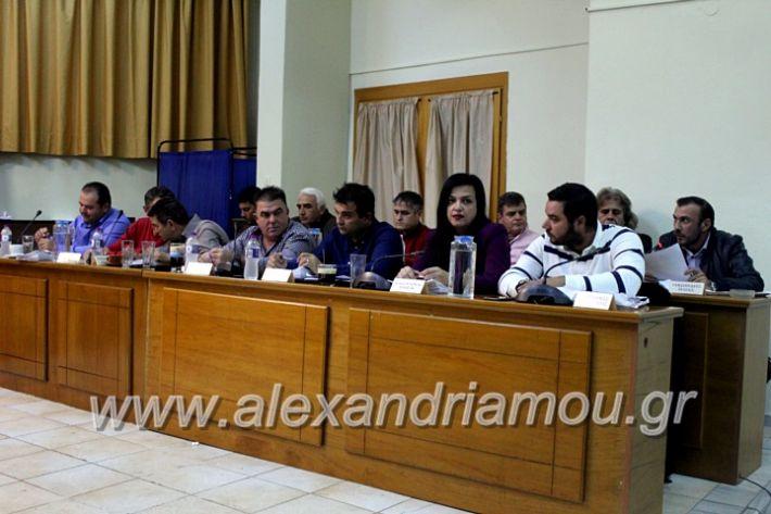 alexandriamou.gr_dimsimboulio25.11.19IMG_1706