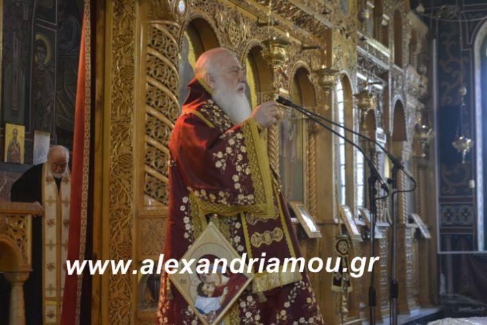 alexandriamou.dokslogianisiolokautoma2019146