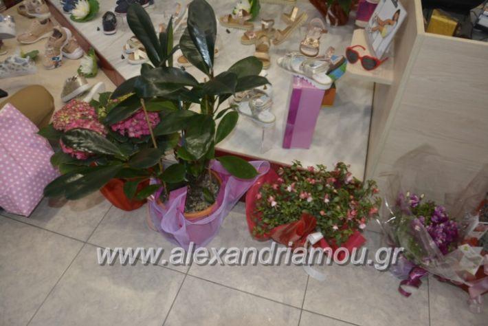 alexandriamou_eviegkania2019127