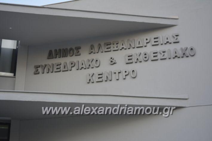 alexandriamou_ppneumatikoken2019001