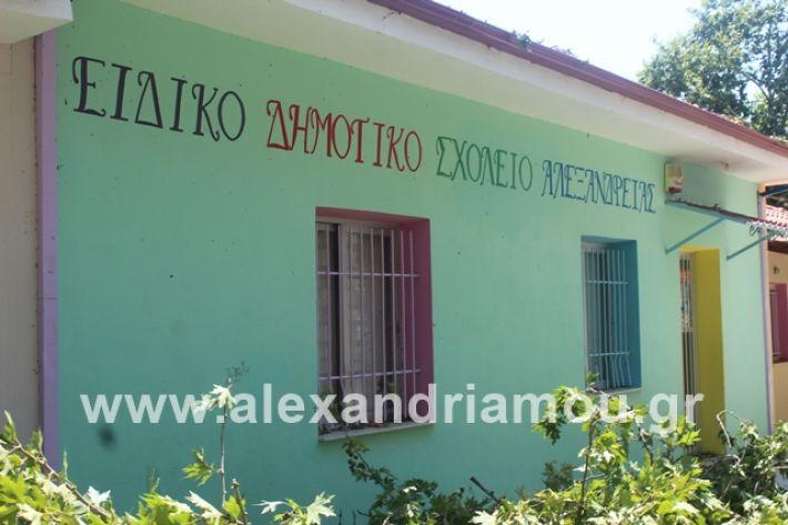 alexandriamou.gr_eidiko12.7.19012