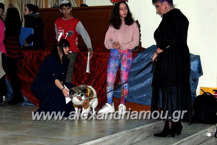 alexandriamou.gr_filoptoxoseidiko2019IMG_8908