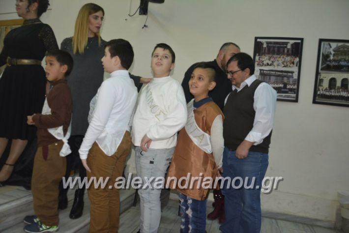 alexandriamou.gr_eidikosxoleioxris2018079