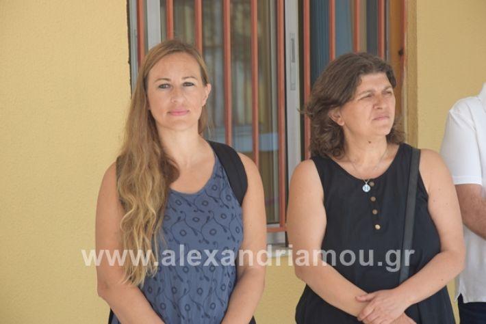 alexandriamou.gr_epalagiasmos19006
