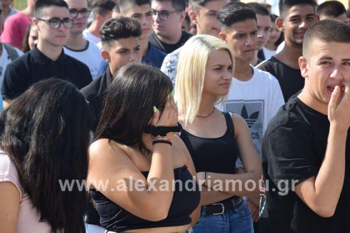 alexandriamou.gr_epalagiasmos19012