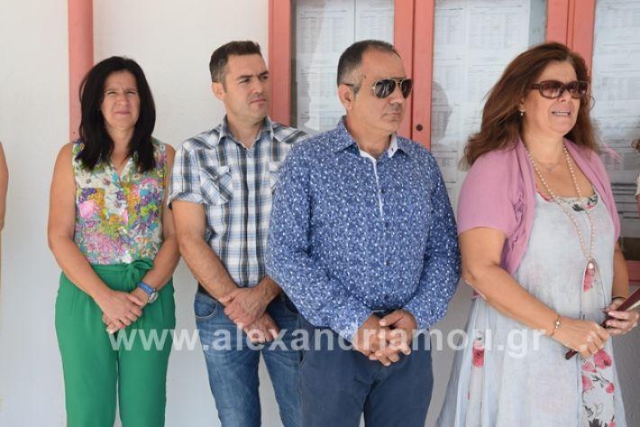 alexandriamou.gr_epalagiasmos19022