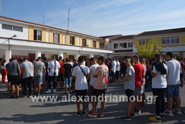 alexandriamou.gr_epalagiasmos19036