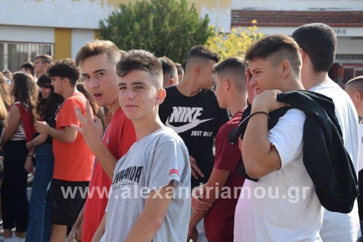 alexandriamou.gr_epalagiasmos19038