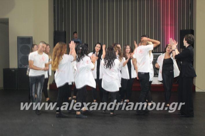 alexandriamou.gr_epalxoros2019214