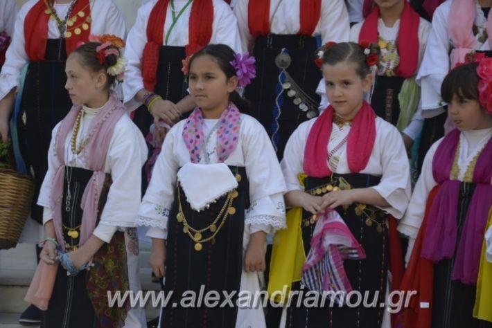 alexandriamou_estieslazarines2019013