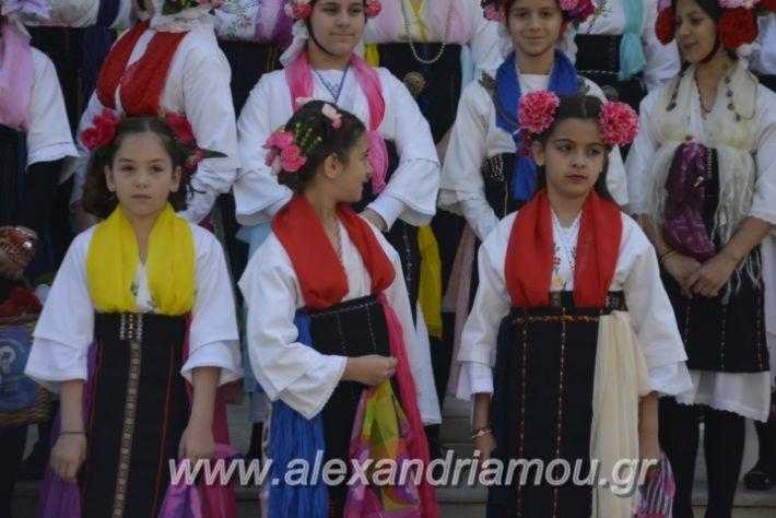 alexandriamou_estieslazarines2019014