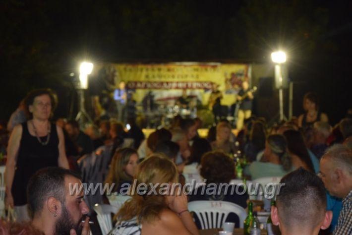 alexandriamou.gr_fanourgiotika2018017
