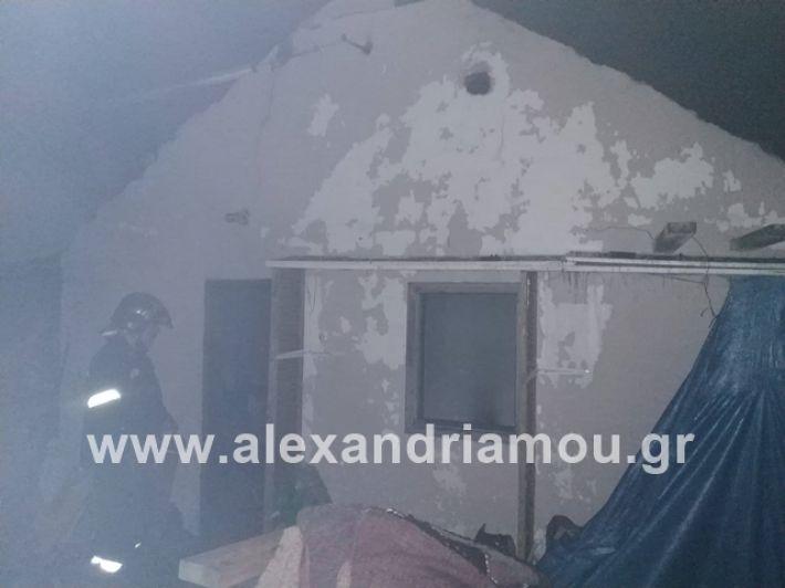alexandriamou.gr_fotia17.7.2019004