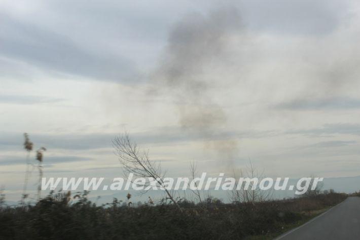 alexandriamou.gr_fotia6.3.20002
