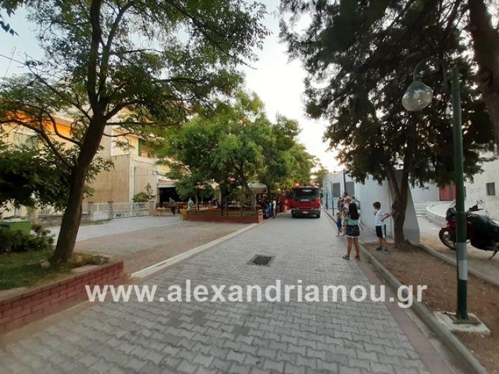 alexandriamou.gr_fotia0878001