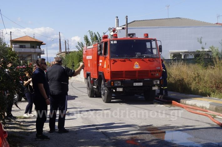 www.alexandriamou.gr_fotia123_DSC9580
