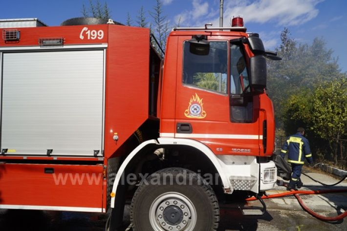 www.alexandriamou.gr_fotia123_DSC9582