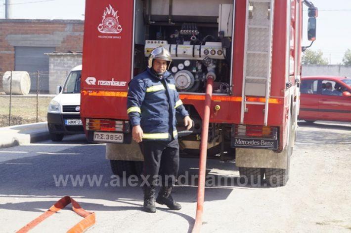 www.alexandriamou.gr_fotia123_DSC9588