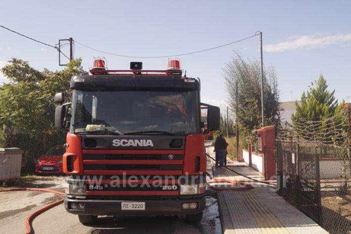 www.alexandriamou.gr_fotia123_DSC9602