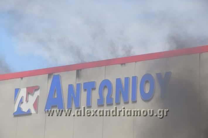 alexandriamou_fotia023