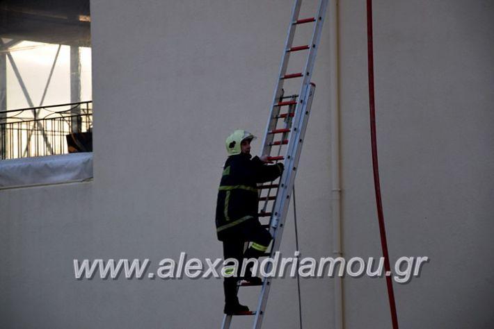 alexandriamou.gr_fotia2711DSC_0035