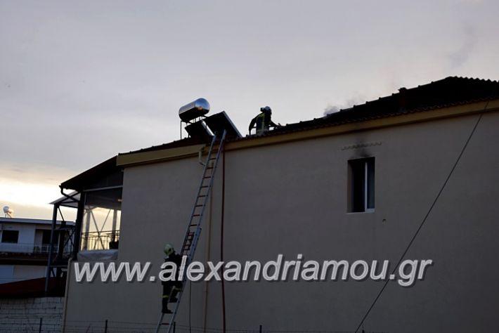 alexandriamou.gr_fotia2711DSC_0037