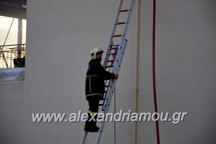alexandriamou.gr_fotia2711DSC_0038