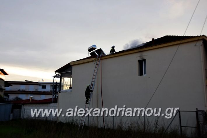 alexandriamou.gr_fotia2711DSC_0039