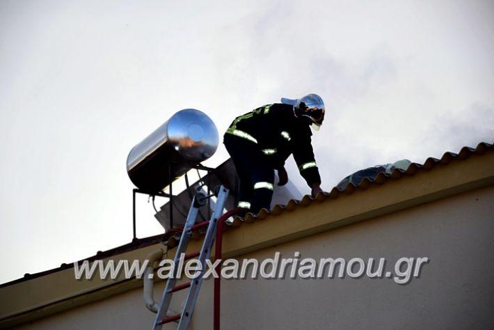 alexandriamou.gr_fotia2711DSC_0052