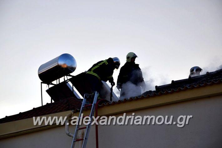 alexandriamou.gr_fotia2711DSC_0057