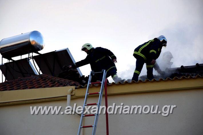 alexandriamou.gr_fotia2711DSC_0064