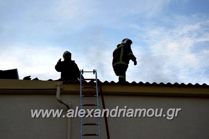alexandriamou.gr_fotia2711DSC_0073
