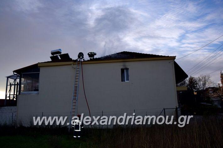 alexandriamou.gr_fotia2711DSC_0079