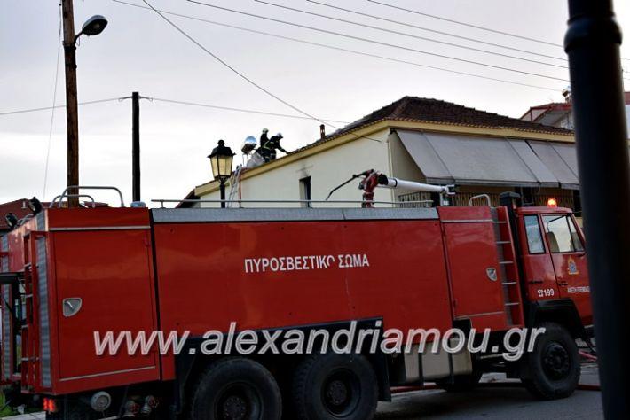 alexandriamou.gr_fotia2711DSC_0083